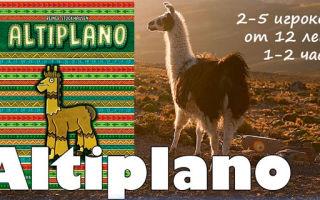 Настольная игра «Альтиплано»- жизнь в Андах