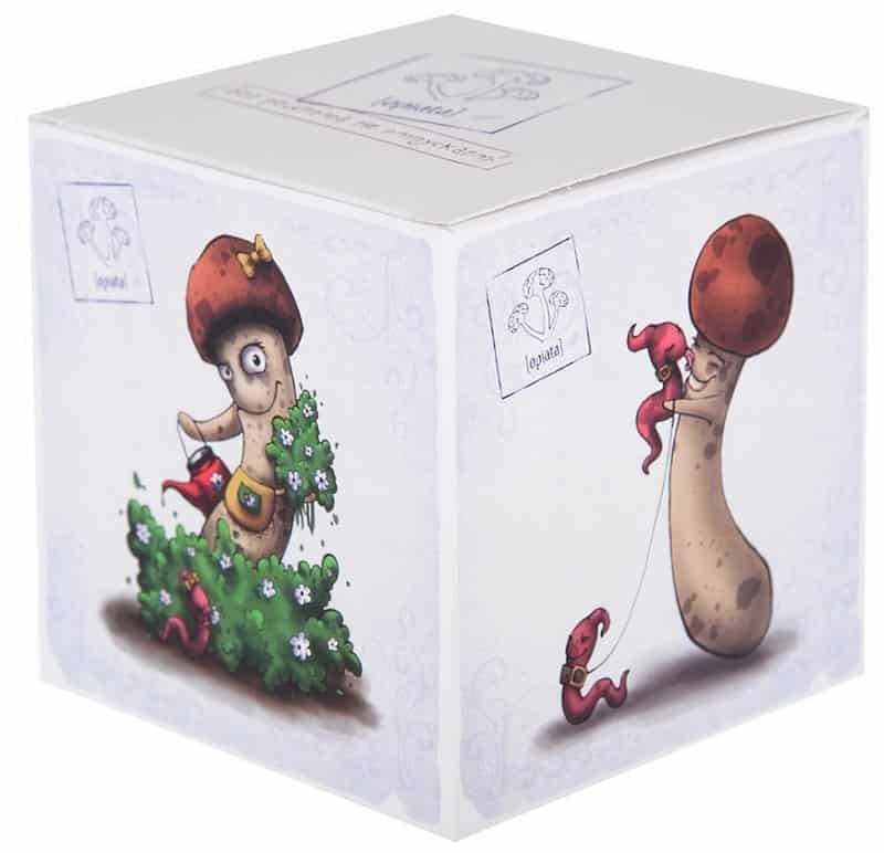 коробка с Опятами